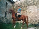 Histoire LUCKY HORSE Ferme Elevage Gracombe (28)